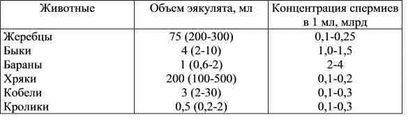golie-devushki-v-povsednevnoy-zhizni